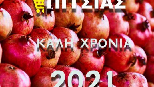 ΠΙΤΣΙΑΣ Α.Ε. 2021